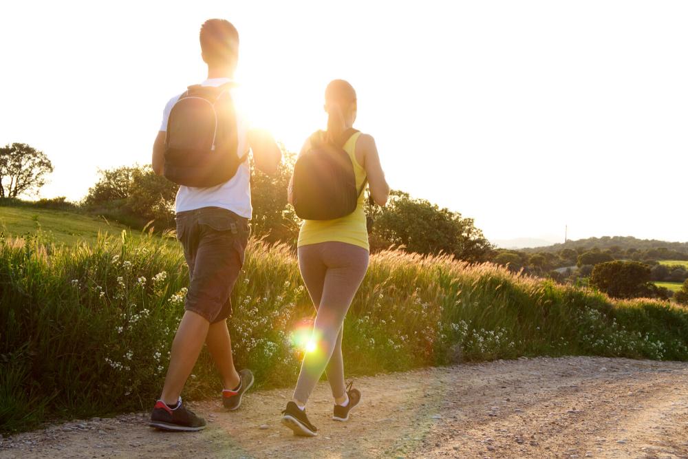 Os benefícios da caminhada na natureza para o cérebro